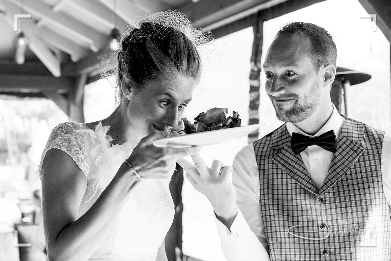 bruiloftinbeeld2015-07-09_18-48-23-2